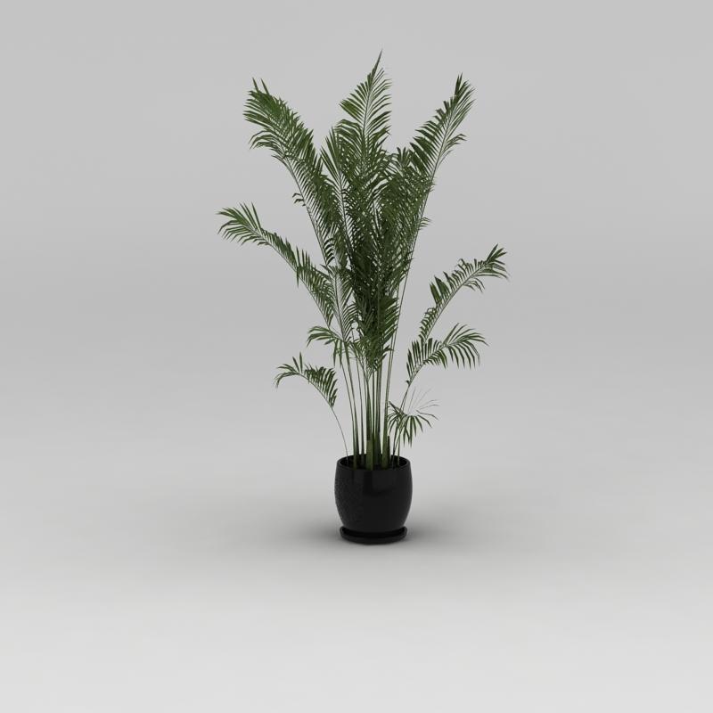 室内花盆绿植散尾葵3D模型下载-图2