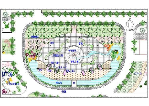某地中心广场景观设计总平面设计图