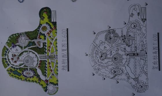 校园绿地立面手绘图