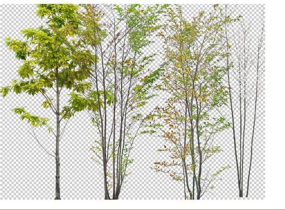 植物素材图纸