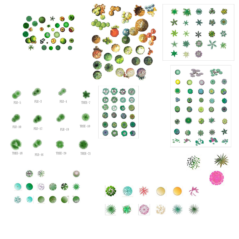 图纸 园林设计图 园林植物平面素材彩图  (0人评价)