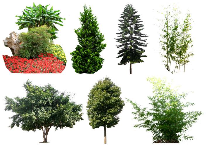 植物立面图cad植物立面图库ps门头设计ps景观素材景观小品ps素材园林