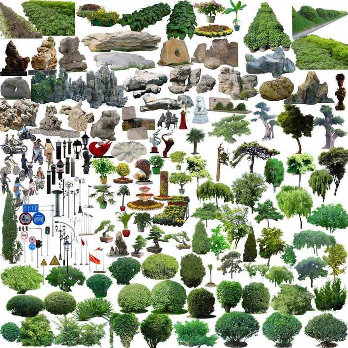 ps植物平面图11