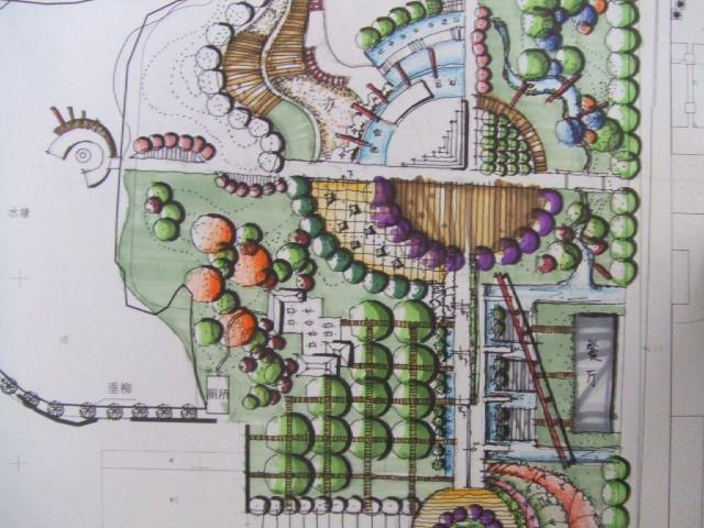 景观平面学校手绘