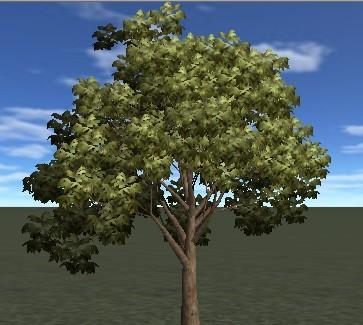 3d树木贴图