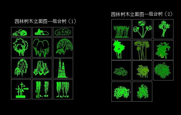 4-园林树木立面图-组合树