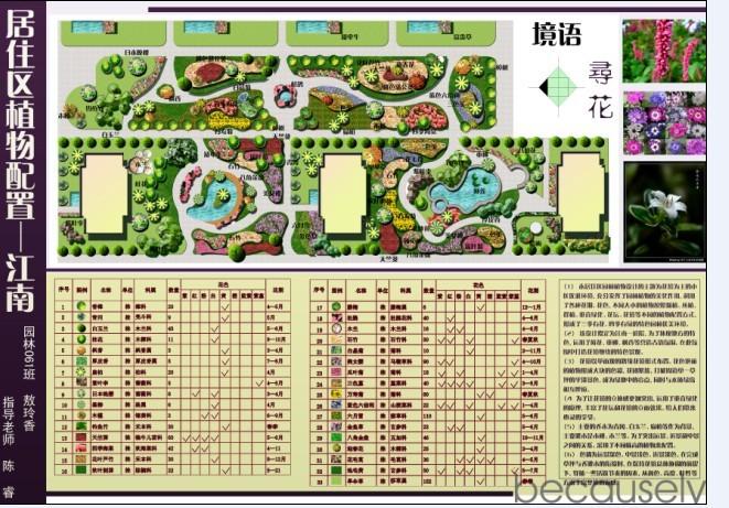 景观方案植物配置表