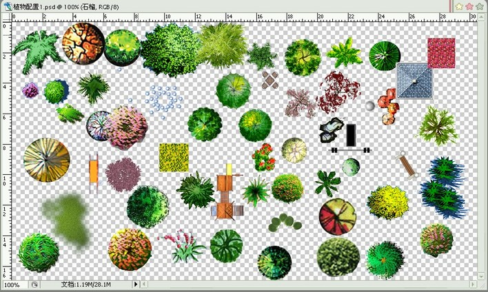 植物搭配平面图