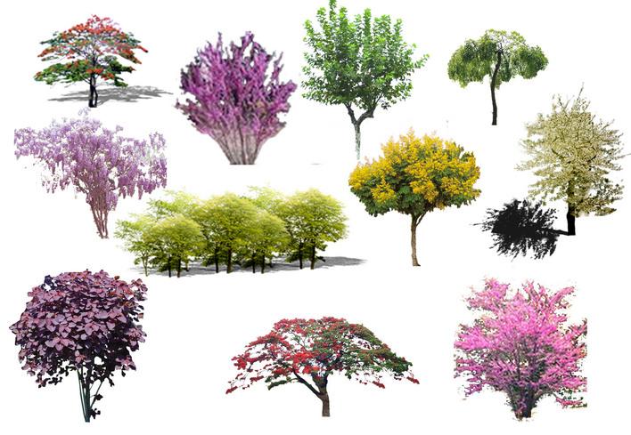 实用的铺地材质 实用树材质 经典实用的材质大全 [整套]超清晰的经典