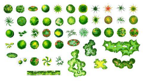 园林常用植物cad平面图素材 ps铺地 树木 建筑等平面素材  投稿网友:a