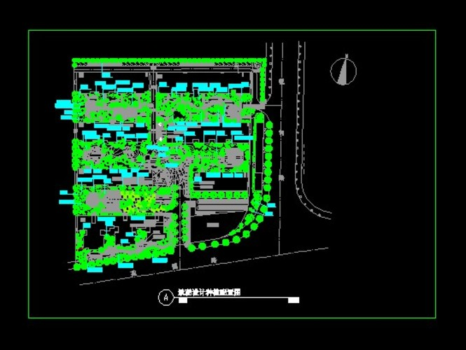 广场植物配置平面图 花坛植物配置平面图