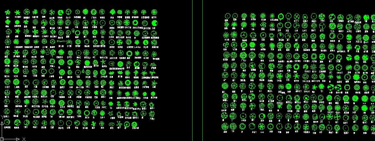 园林cad树木植物平面素材图
