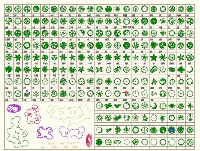设计方案阶段套图(景观设计方案图)  cad园林植物图例   与园林植物