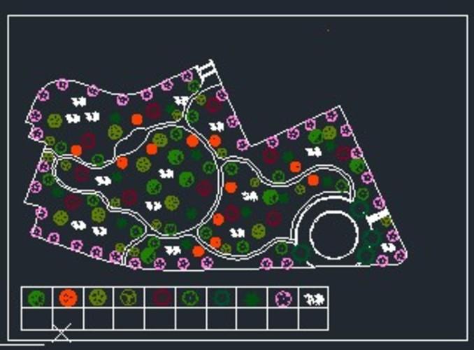 安康学院景观坡植物配置图