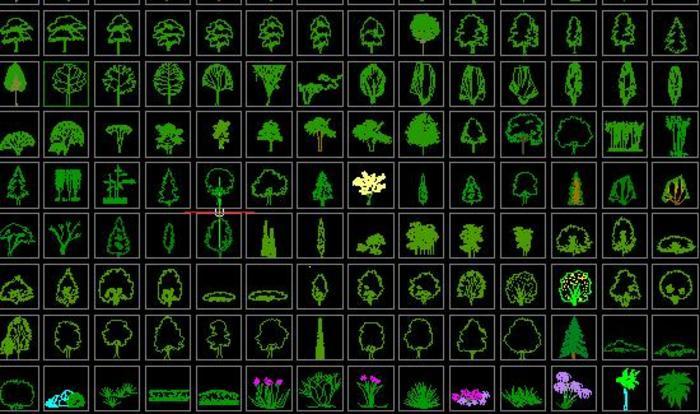 很适用的手绘各种树木平面图 园林用各种树木图标 植物立面 各种树形