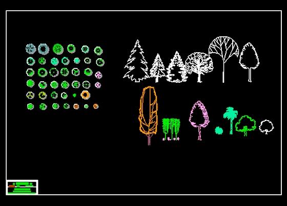 cad植物立面图