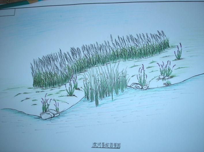 手绘滨河小景观1