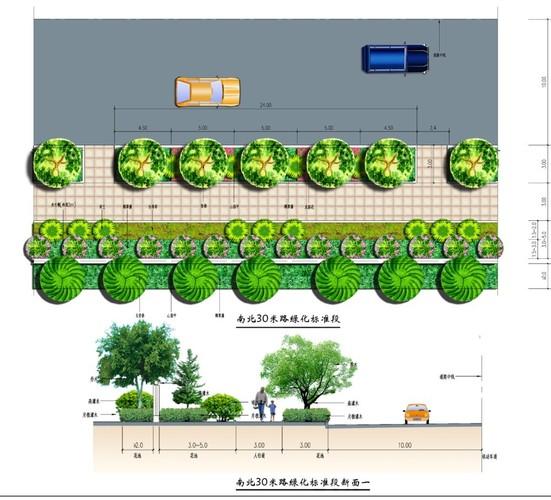 道路绿化平面图 断面图