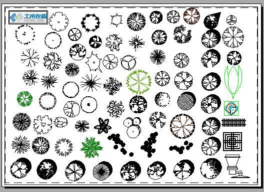 园林植物图例
