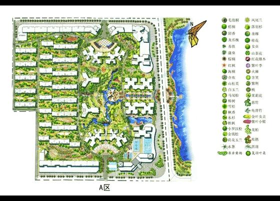 园林景观平面效果图