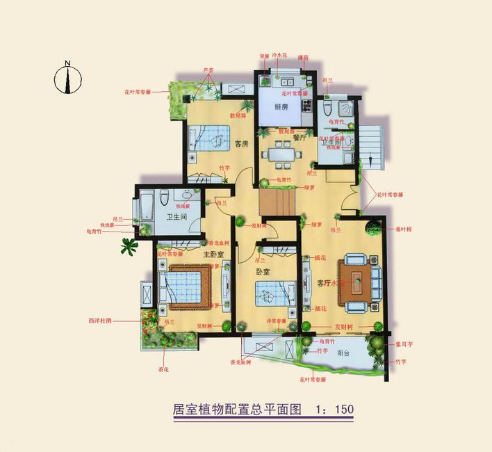图纸 园林设计图 室内植物配置  投稿网友:yangpeng10101030 上传时间