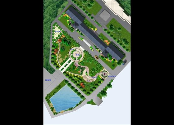 学校广场绿化平面图