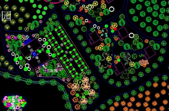 某地观光果园设计图图片