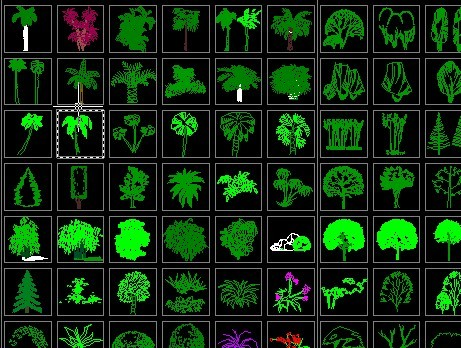 植物立面图例.
