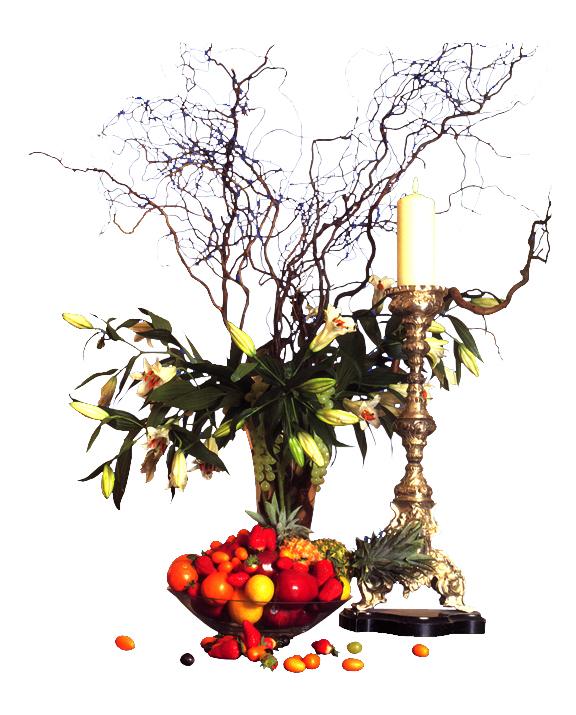 图纸 园林设计图 室内植物材料  上传时间:2006-09-18 所属分类:园林