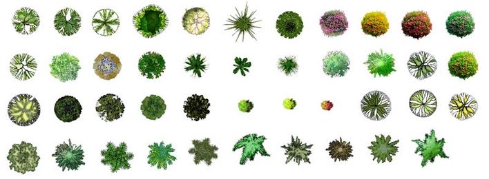 公园手绘平面图 公园平面图手绘  所属分类:园林设计图  手绘平面图