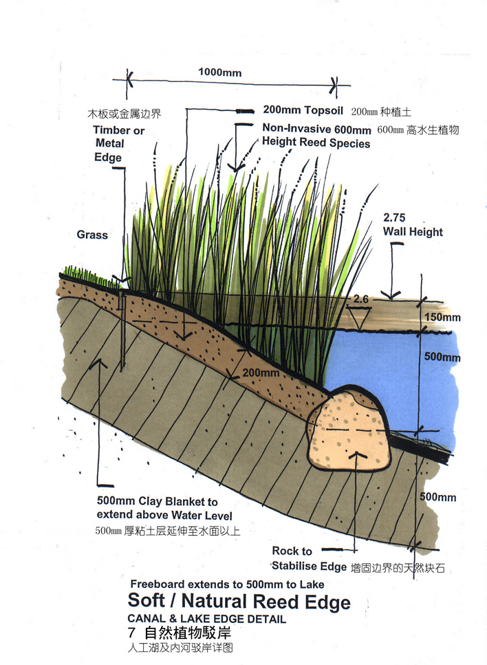植物剖面图ps素材