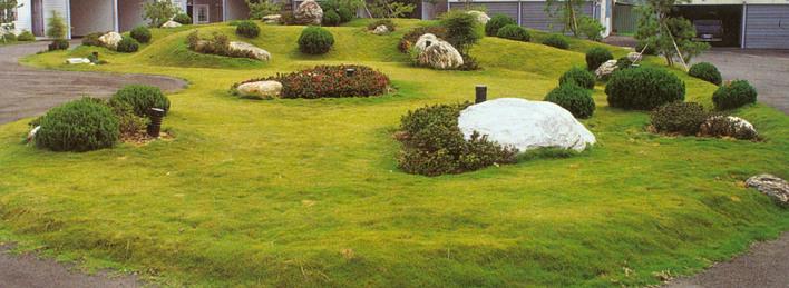 植物配置   相关专题:景观植物配置 屋顶花园植物配置 植物配置立面