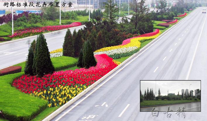 道路绿化设计效果图
