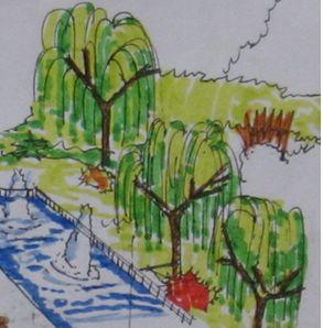 柳树手绘图
