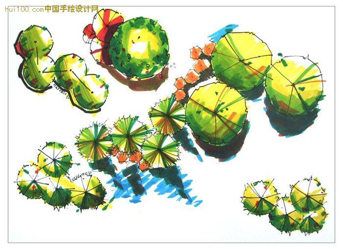 手绘园林植物平面图例图片展示_手绘园林植物平面