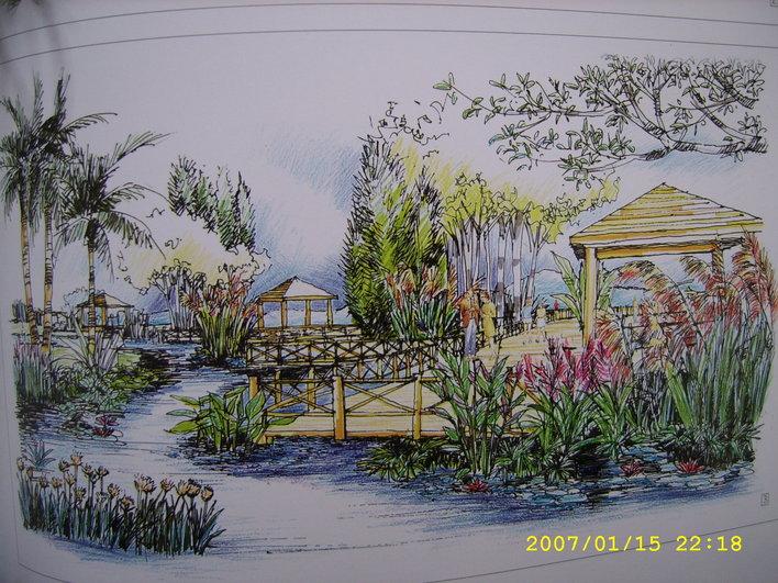 园林石头与池塘手绘效果图