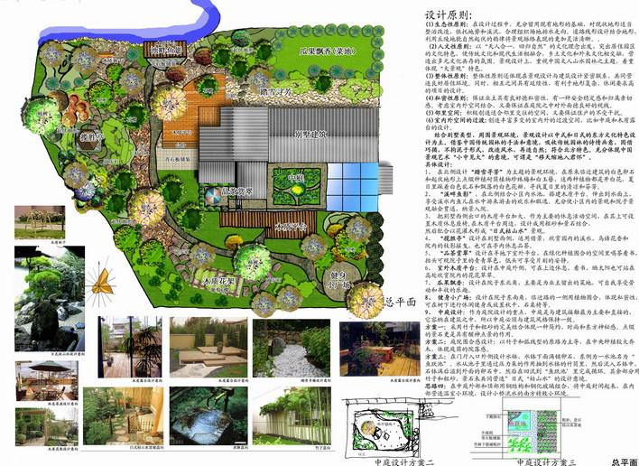 别墅庭院景观设计   别墅庭院设计,简单手绘线条后phto处理+设计说明