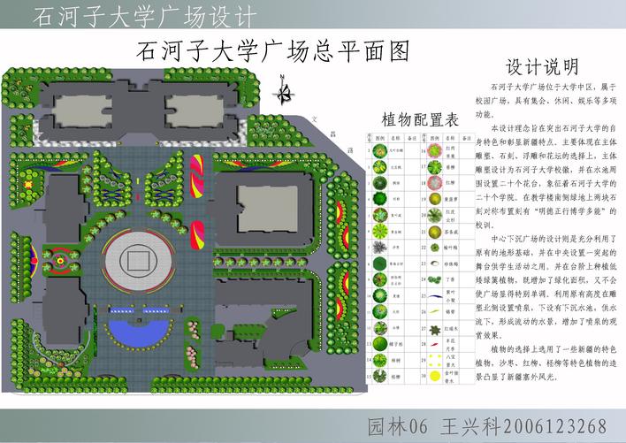 石河子大学广场平面图