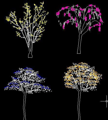cad树种立面图