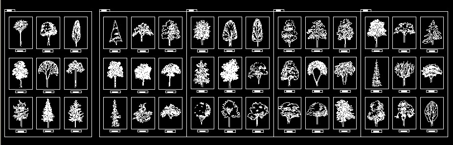 必备的植物立面图