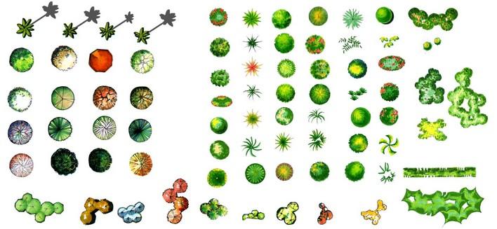 图块手绘图标 ps植物平面图块1乔木 f:ps植物平面图块植物图例 ps