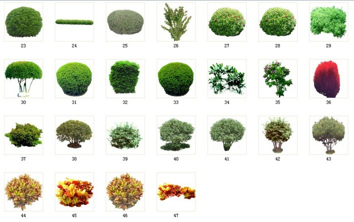 植物素材33灌木素材 033 a23-47