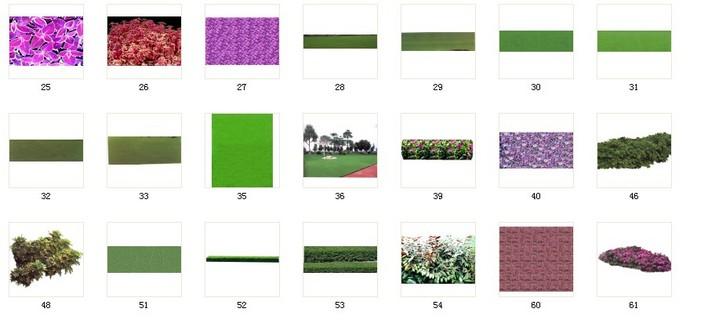 植物素材36植被 036 a25-61