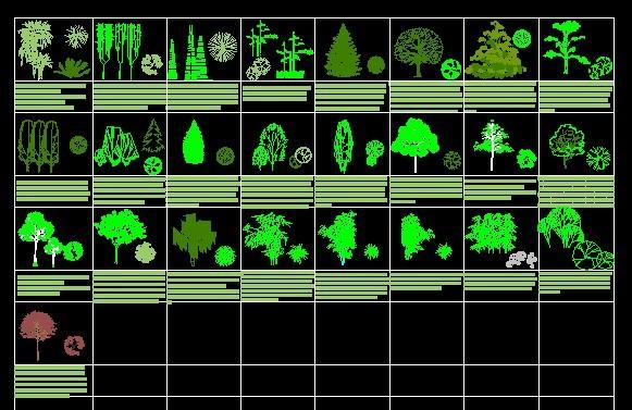 居住区及公园绿化设计图(居住区绿化)  各种类cad立面树造型    各种