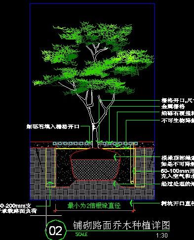 标准植物种植图