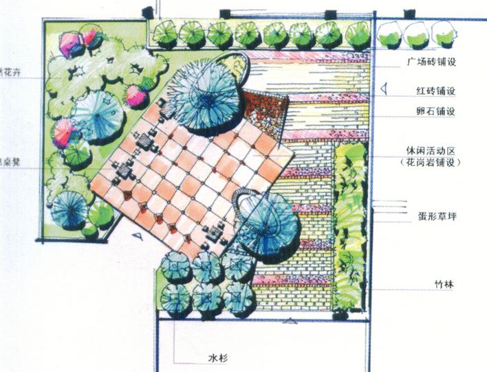 景观植物配置手绘