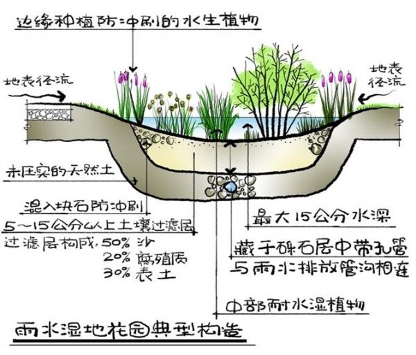 图纸 园林设计图 景观植物种植  (0人评价)|                 | 11次
