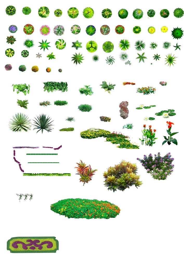 植物图例平面图素材