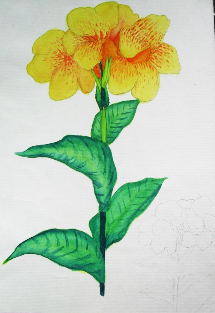 我的手绘临摹作业马克笔加水彩加彩铅