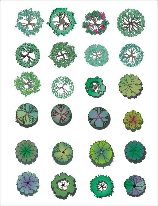 园林植物平面图例大全bysangge ps后期处理常用花坛植物图块 手绘树种